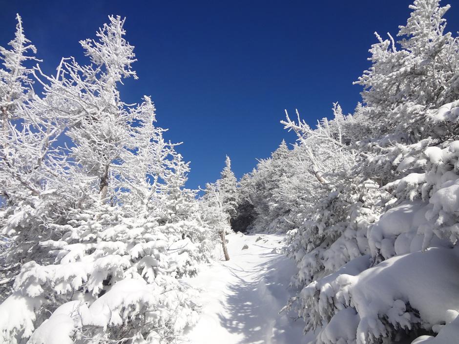 Mt. Lafayette Winter